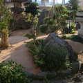 草の生えない土舗装画像2