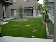 花壇と芝生