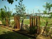 木柱と植栽の取り合わせ