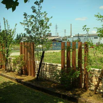 木柱と植栽の取り合わせ画像1