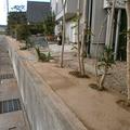 草の生えない土の庭画像3