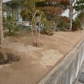 草の生えない土の庭画像2