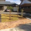 芝生とスタンプコンクリートのマチィング画像2