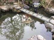 池水漏れ補修