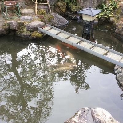 池水漏れ補修画像1