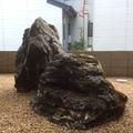 庭石と沓脱石画像2