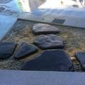 飛び石のアプローチ画像2