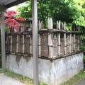 天然竹から人工竹へ画像4