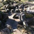池の水漏れ補修画像4