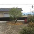 和風の植栽です画像3