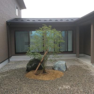 和風の植栽です画像1