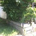 花壇をリニューアル画像4