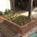 花壇をリニューアル画像2