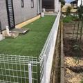 人工芝のドックラン画像2
