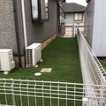 人工芝のドックラン画像3